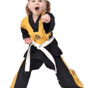 taekwondo classes courses training beginners wirral west kirby jason rodd school