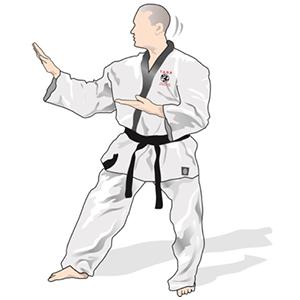 the jason rodd school of taekwondo west kirby runcorn tigers